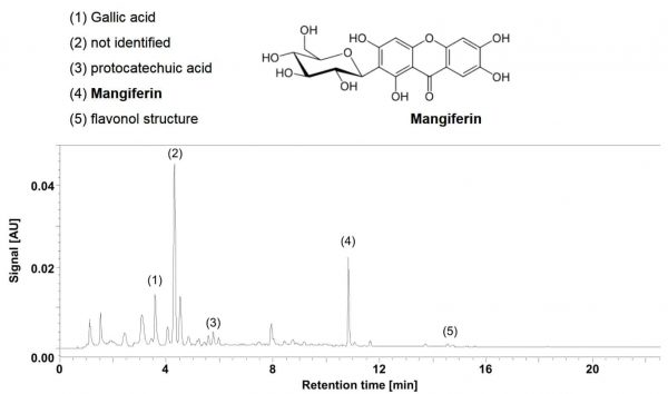 Mangifera indica high pressure liquid chromatography results
